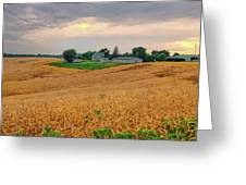 Fields Of Gold, Illinois Greeting Card