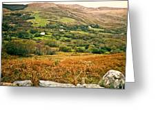 Fields Of Ireland Greeting Card