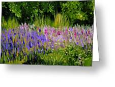Fields Of Purple Greeting Card