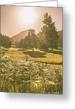 Fields Of Springtime Greeting Card