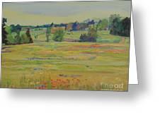 Fields Of Texas Wildflowers Greeting Card