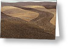 Fields Of Tuscany Greeting Card