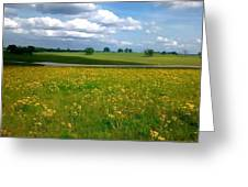 Fields Of Yellow Greeting Card