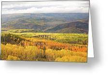 Fiery Aspen Grove Greeting Card