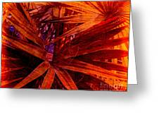 Fiery Palm Greeting Card