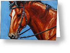 Fiery Red Bay Horse Greeting Card
