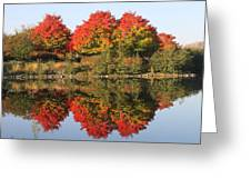 Fiery Reflections Greeting Card