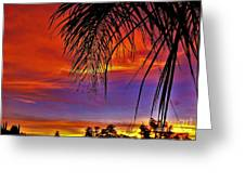 Fiery Sunset With Palm Tree Greeting Card