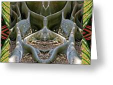 Fig Tree Ally Greeting Card by Bell And Todd