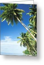 Fiji, Vanua Levu Greeting Card by Peter Stone - Printscapes