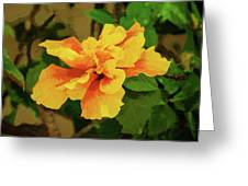 Fijian Hibiscus Abstract In Del Mar 2 Greeting Card