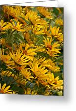 Filled With Sunflowers Vertical Greeting Card