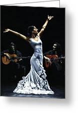Finale Del Funcionamiento Del Flamenco Greeting Card by Richard Young