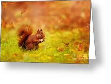 Finally Found My Peanut... Greeting Card
