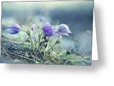 Finally Spring Greeting Card by Priska Wettstein