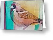 Finch Fun Greeting Card