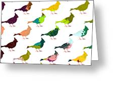 Finch Pattern Greeting Card