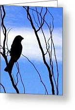 Finch Silhouette 1 Greeting Card