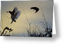 Finches Silhouette With Leaves 5 Greeting Card