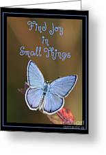 Find Joy In Small Things Greeting Card