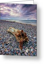 Findhorn Beach Greeting Card
