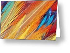 Fine Art Feathers Greeting Card