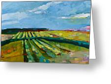 Fine Fields Greeting Card