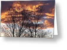 Fine Lines 1 Greeting Card