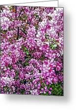 Fine Wine Cafe Apple Blossoms Greeting Card