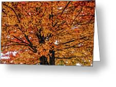 Fine Wine Cafe Golden Tree Greeting Card