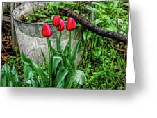 Fine Wine Cafe Red Tulips Greeting Card
