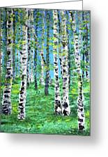 Finland Birches  Greeting Card
