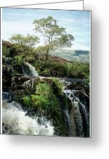 Fintry Loupe Greeting Card