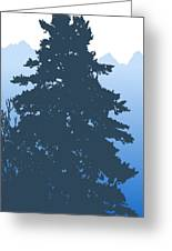 Fir At Dusk Greeting Card