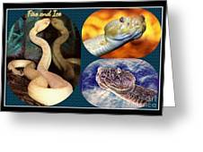 Fire And Ice Slither Collage Greeting Card