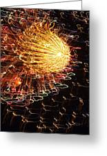 Fire Flower Greeting Card by Karen Wiles