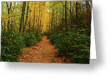 Fire Road Up Mount Minsi Greeting Card