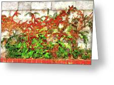 Fire Thorn - Pyracantha Greeting Card
