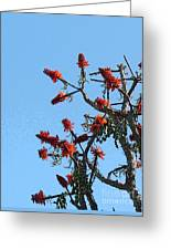 Fire Tree Greeting Card