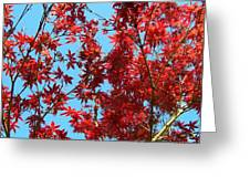 Fire Tree II Greeting Card