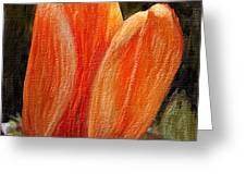 Fire Tulip Greeting Card