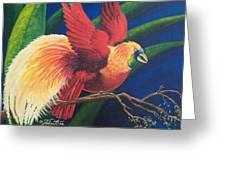 Firebird Greeting Card