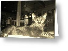 Firece Cat Greeting Card