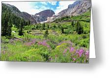 Fireweed Frenzy Greeting Card
