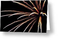 Fireworks 103 Greeting Card