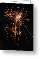 Fireworks 2 Greeting Card by Michael Peychich