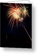 Fireworks 49 Greeting Card by James BO  Insogna