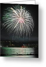 Fireworks And Wildlife Greeting Card