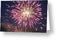 Fireworks In The Park 2 Greeting Card