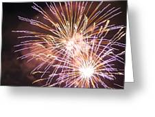 Fireworks In The Park 3 Greeting Card